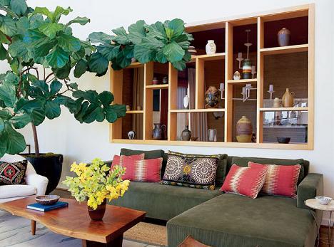 Một chậu cây to lá dày và rộng ở góc nhọn của phòng để giúp hóa sát và dùng để trang trí